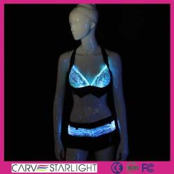 YQ-25-26 sexy bra and panty led costume