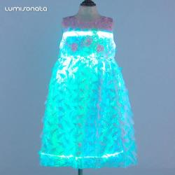 Kid Party Dress With Led