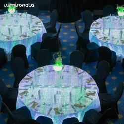 Led luminous table clothing RGB